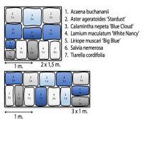 Blau-weißes Beetpaket