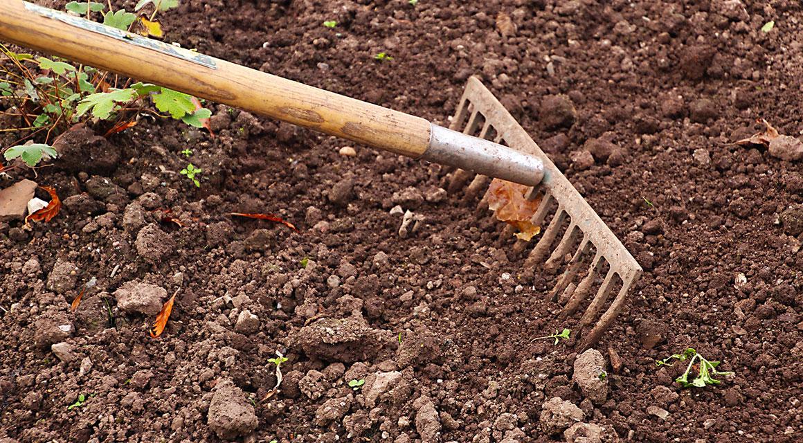 Lockern Sie die Erde im Graben