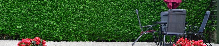 Sichtschutz Garten